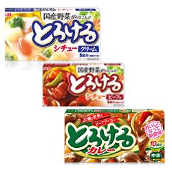 Torokeru White/Beef stew /Curry